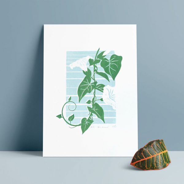 Edy & Fig 'Bindweed' A4 handmade print