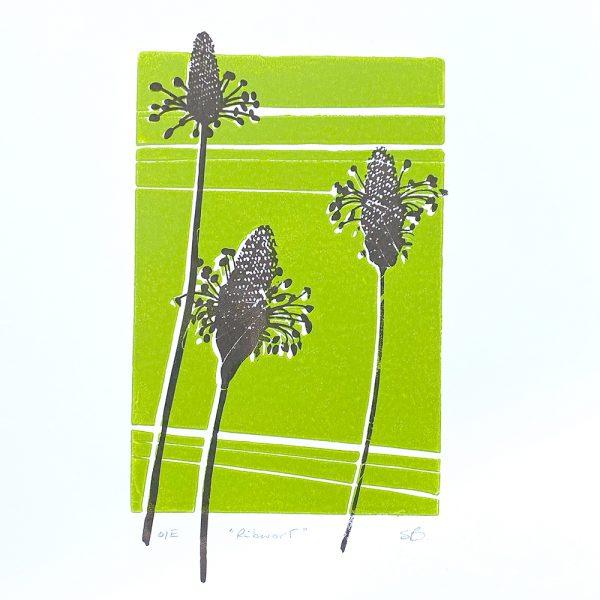 Edy & Fig - 'Ribwort' A4 print