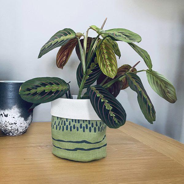 Edy & Fig green planter