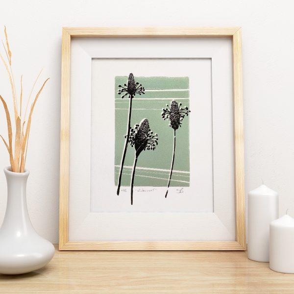 Edy & Fig - 'Ribwort' A4 screen print, wall art