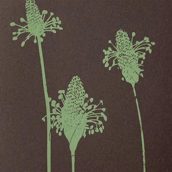 Edy & Fig - screen printed notebook