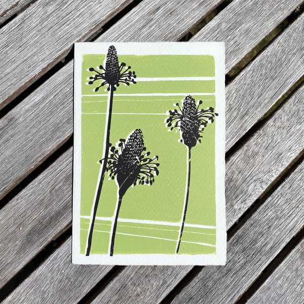 Edy & Fig flower greeting card made in UK